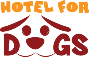 hotel for dog chiriqui